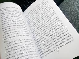 Ejemplar de prueba, novela FUEGO, escritor Patricio Milad 4